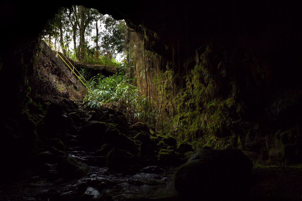 Jungle Cave by John Loo, on Flickr