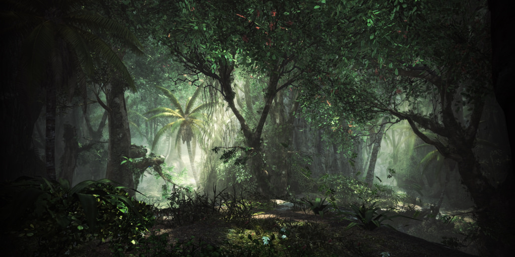AC4 - Forest by Joshua | Ezzell, on Flickr