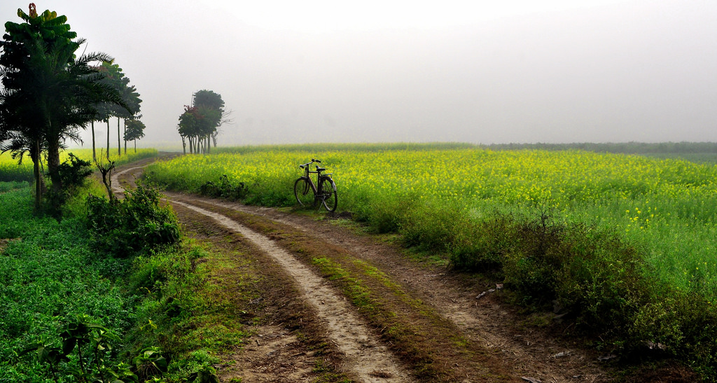 'Country Roads, take me home...' by kg.abhi, on Flickr