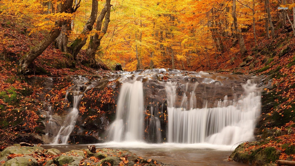 Waterfall in the fall woods - Most Beaut by jin.3444, on Flickr