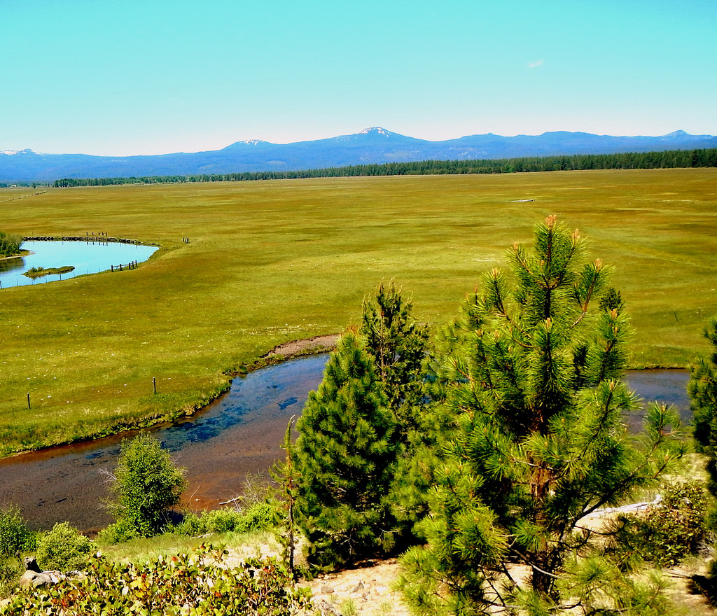 Meadow and flood plain in the Sun Pass S by #ODF, on Flickr