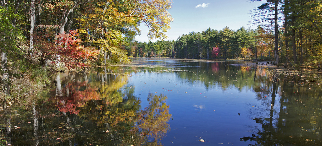Eldrige Pond pano by Muffet, on Flickr