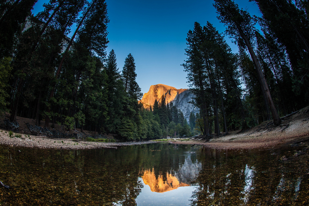 Half Dome Reflection in Yosemite Nationa by Anthony Quintano, on Flickr