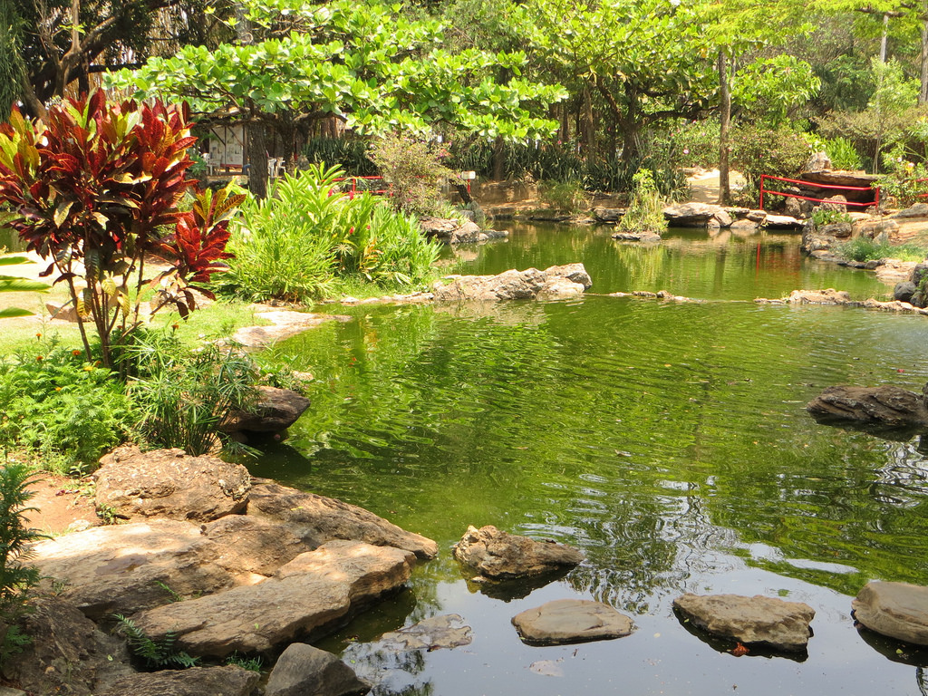 Japanese Garden city of Caldas Novas, Br by Jota.Brazil, on Flickr