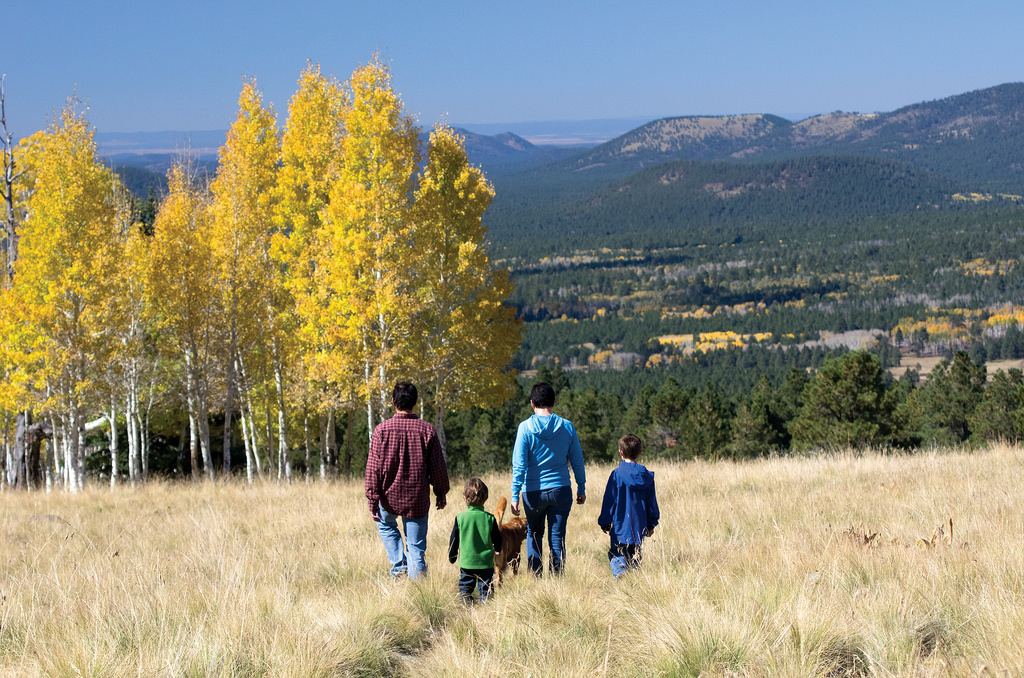 Family Hiking at Hart Prairie2 by Traveloscopy, on Flickr