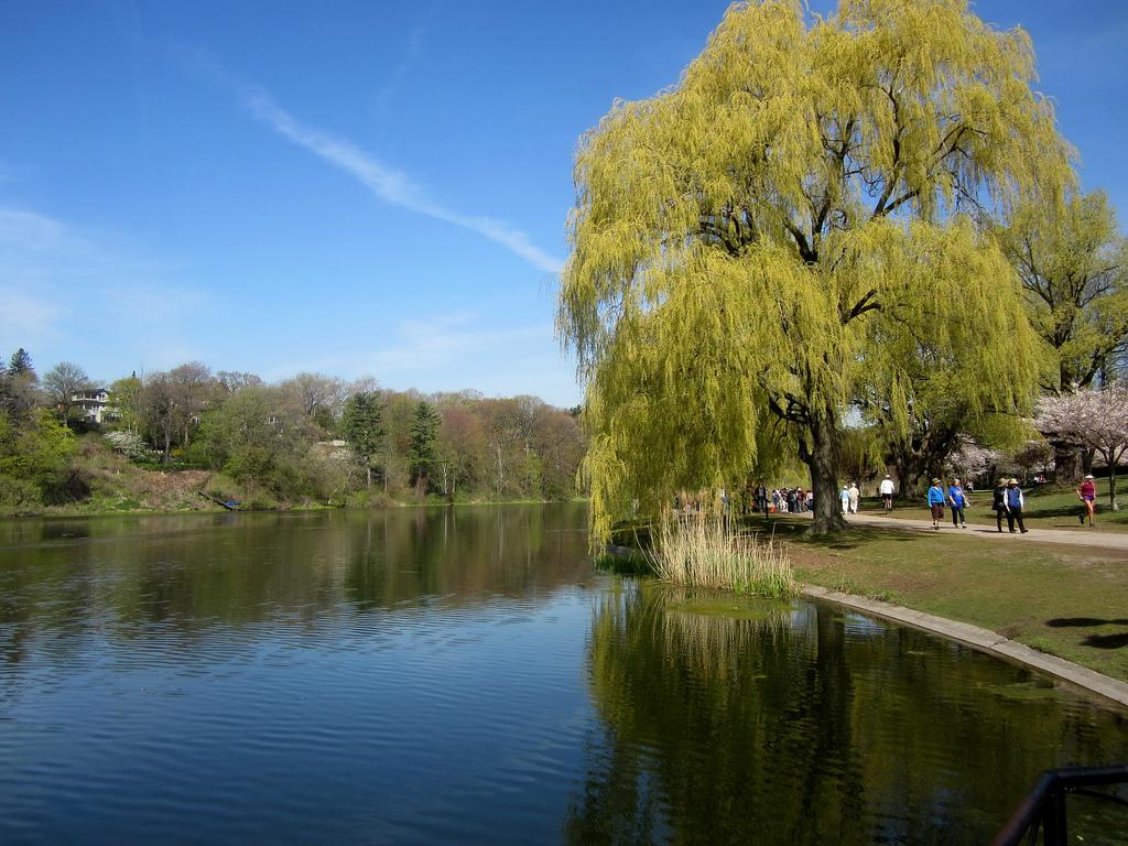 Toronto: High Park Grenadier Pond by The City of Toronto, on Flickr