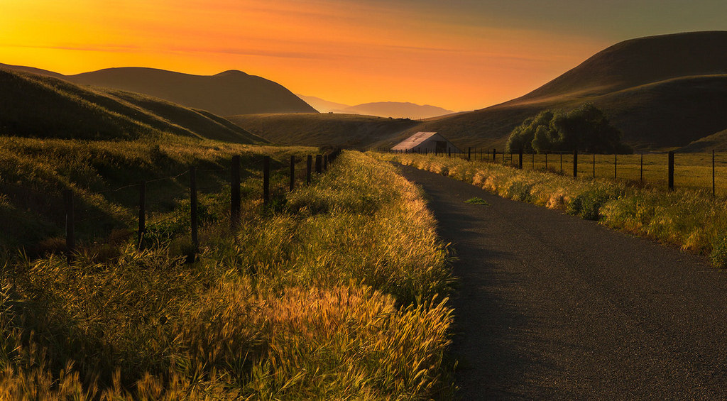 A Road Less Traveled by Malcolm Carlaw, on Flickr
