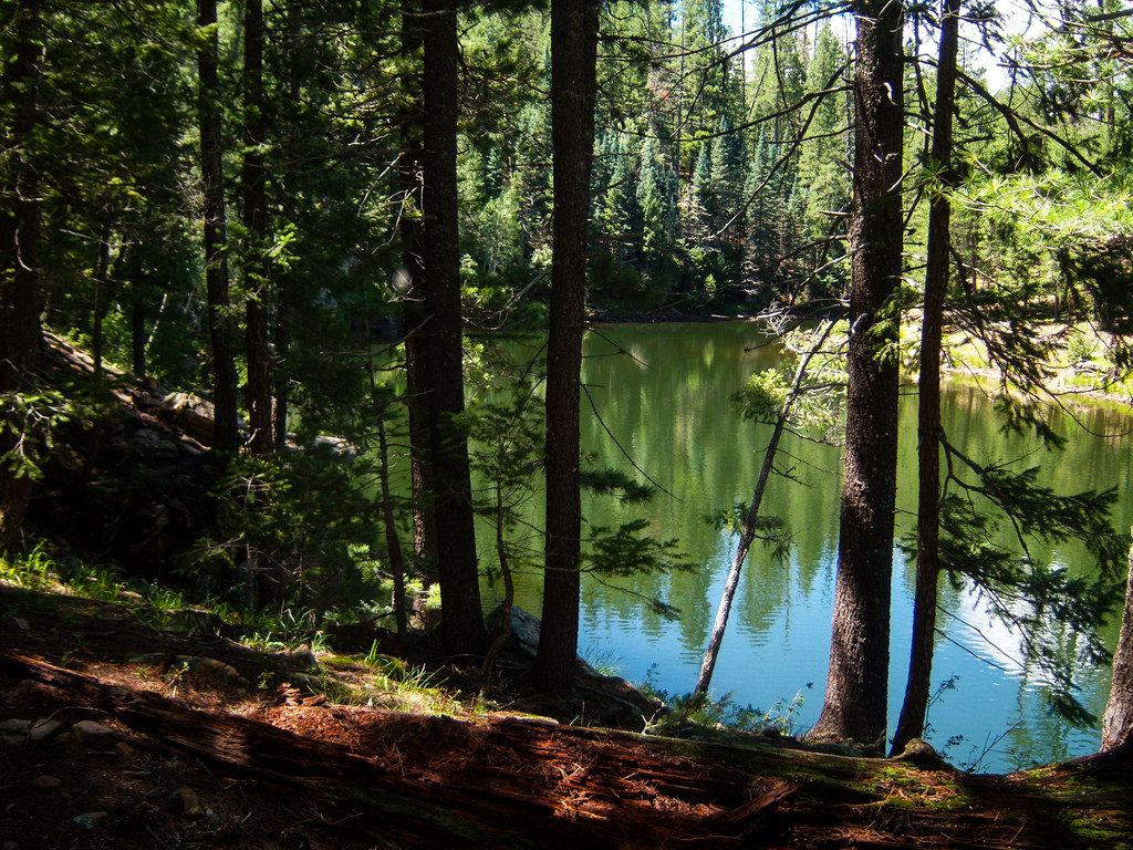 Knoll Lake by Coconino National Forest, on Flickr
