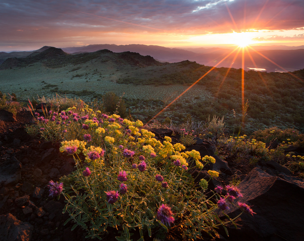 My Public Lands Roadtrip: Nevada Views f by mypubliclands, on Flickr