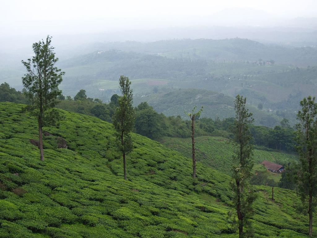 Meppadi Wayanad by dhruvaraj, on Flickr