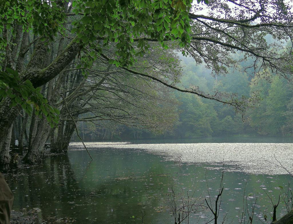 Turkey (Bolu-Seven Lakes National Park) by ustung, on Flickr
