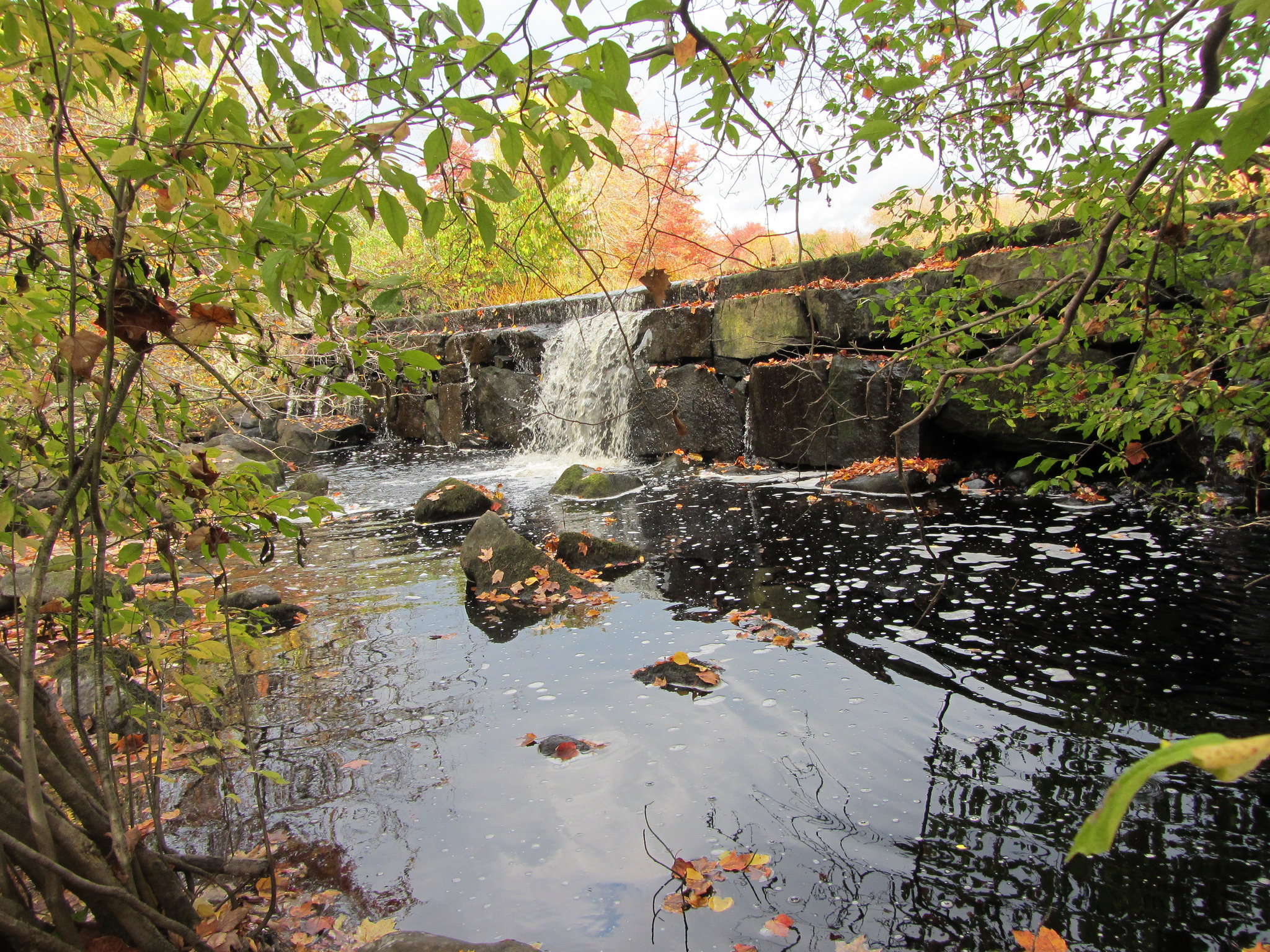 Hyde Pond Dam - before removal by U. S. Fish and Wildlife Service - Northeast Region, on Flickr