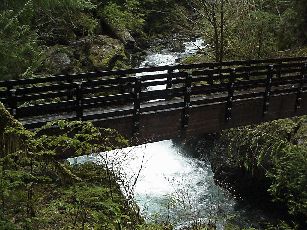Wynoochee maidenhair falls bridge by Forest Service Pacific Northwest Region, on Flickr