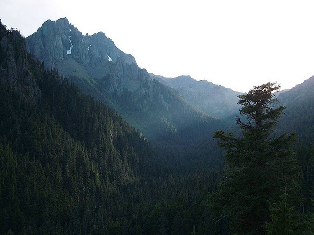 Buckhorn Mountain, Olympic National Fore by Forest Service Pacific Northwest Region, on Flickr