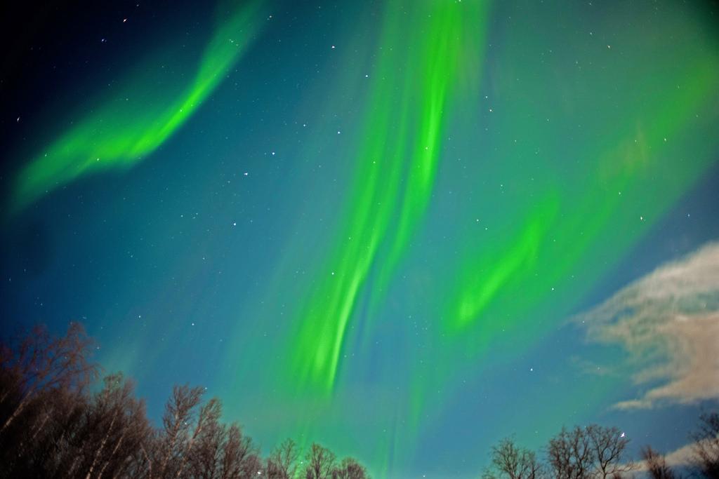 Aurora borealis in Malangen, Norway by Alfred Weidinger, on Flickr