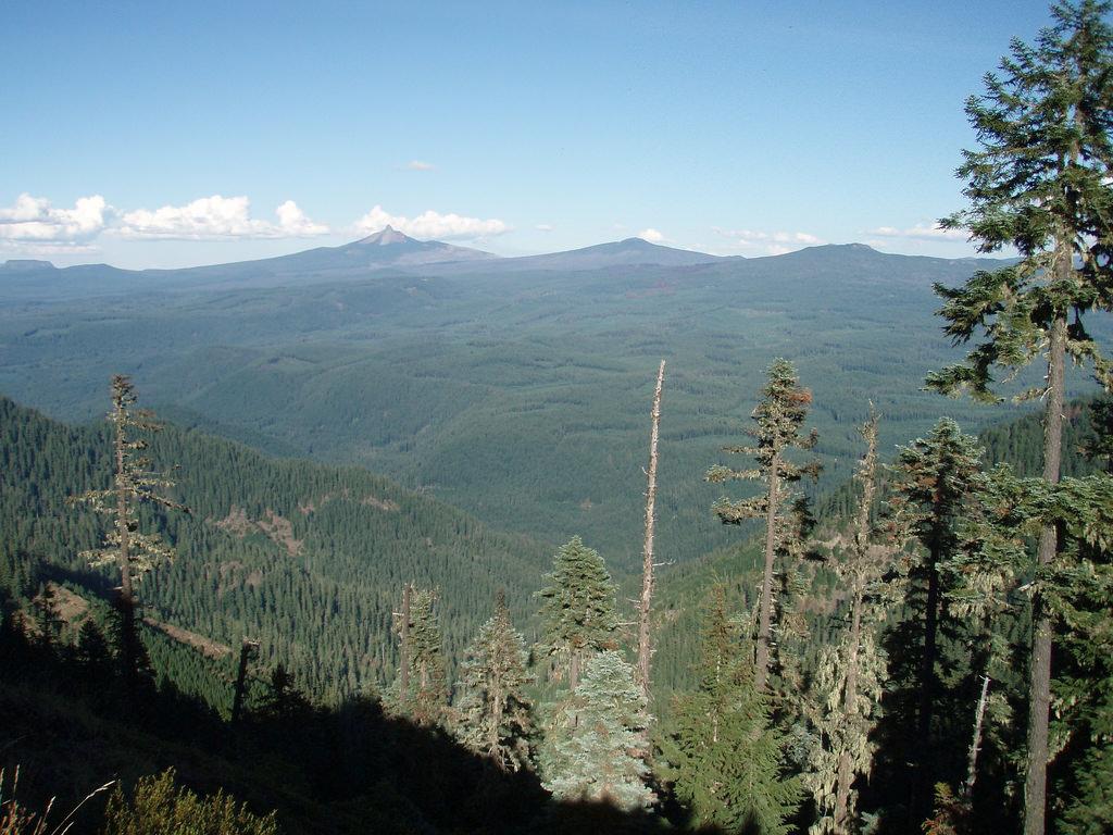 Landscape_Sjohnson2 by Oregon State University, on Flickr