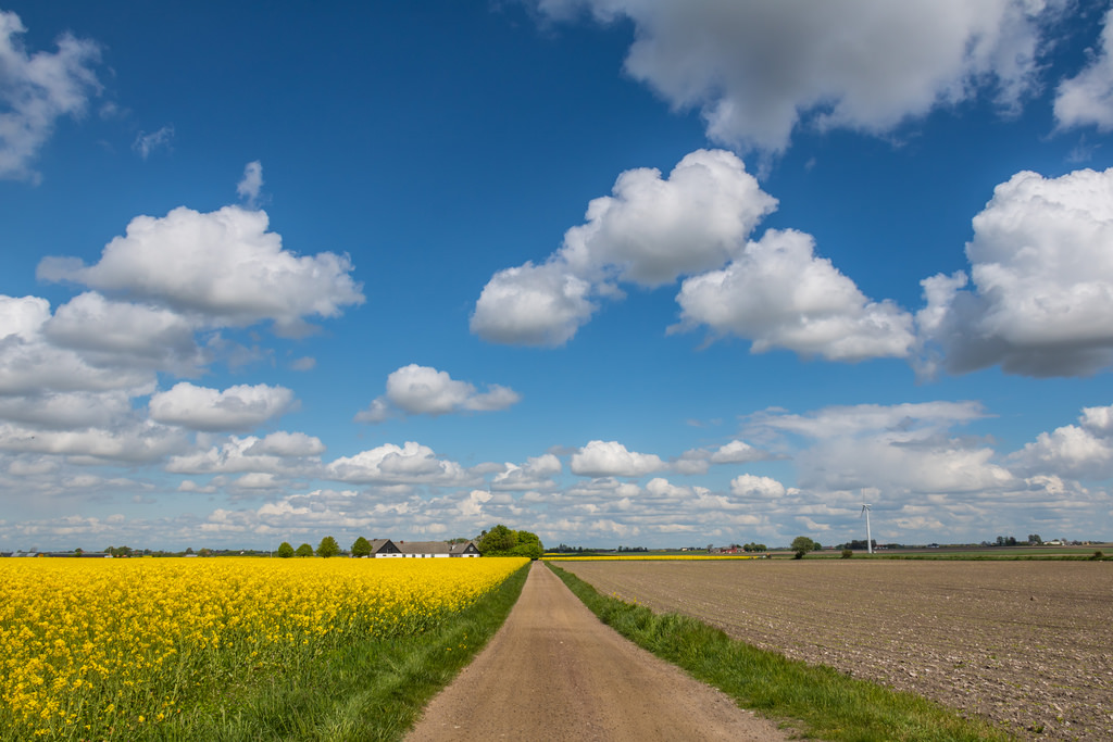 Country Road by Infomastern, on Flickr