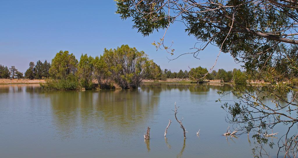 Reynolds Pond Recreation Area by BLMOregon, on Flickr