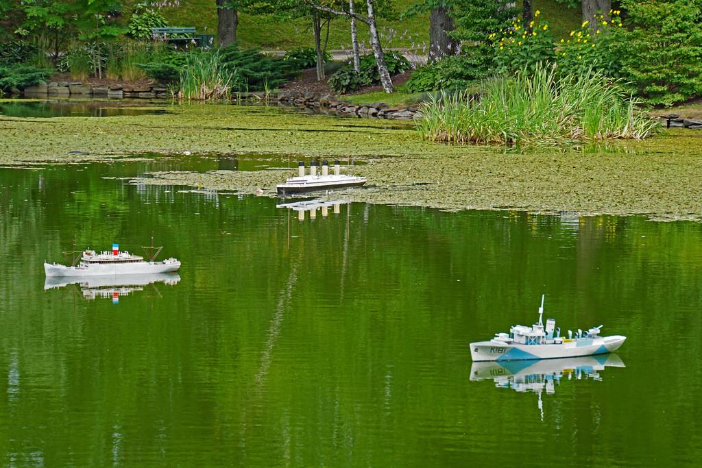 NS-02355 - Griffin's Pond by archer10 (Dennis) 98M Views, on Flickr