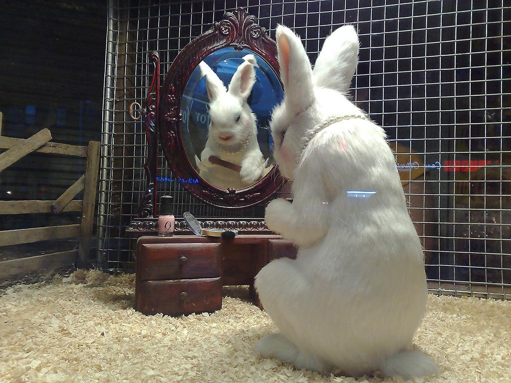 Banksy - Rabbit filing nails by markhillary, on Flickr