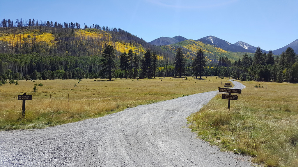 Lockett Meadow by Coconino National Forest, on Flickr