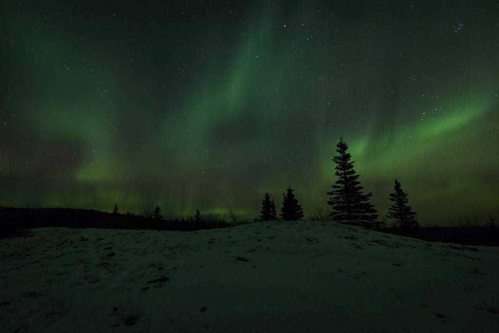 BLMAK White Mountains NRA Aurora-14 by BLM Alaska, on Flickr