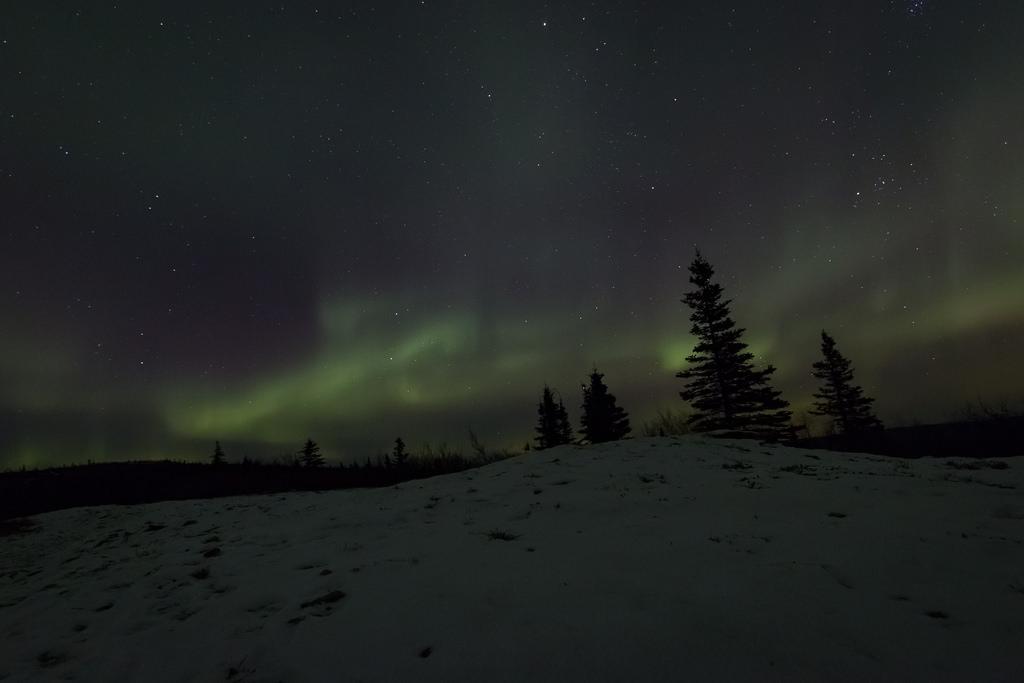 BLMAK White Mountains NRA Aurora-12 by BLM Alaska, on Flickr