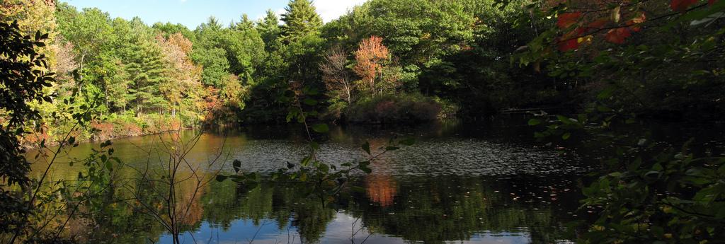 Walden Pond, Concord MA by pablo.sanchez, on Flickr