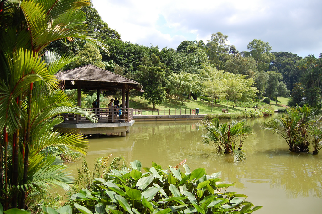 Singapore Botanic Garden by edwin.11, on Flickr