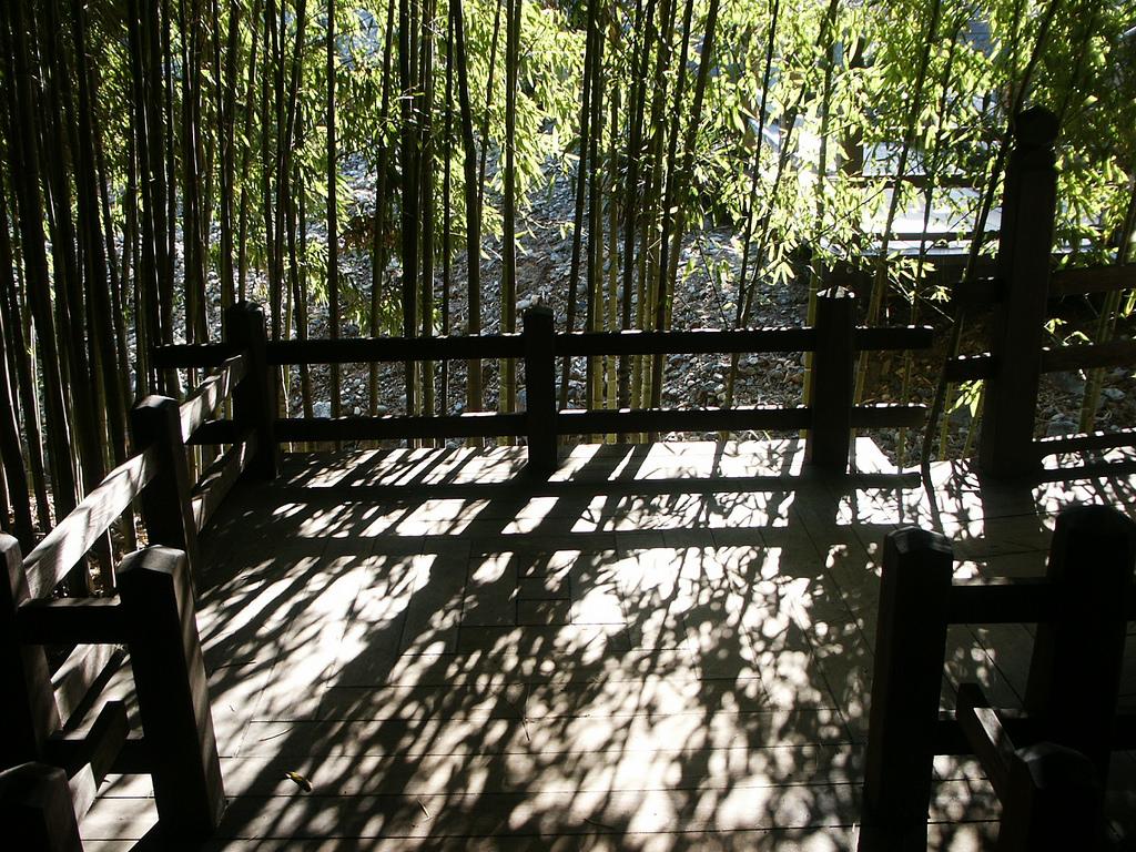 Huntington Library Japanese Bamboo Garde by DominusVobiscum, on Flickr