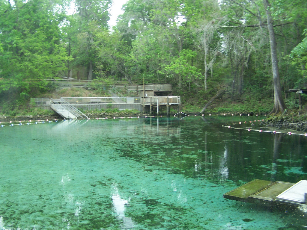 Fanning Springs State Park (Levy County, by systemslibrarian, on Flickr