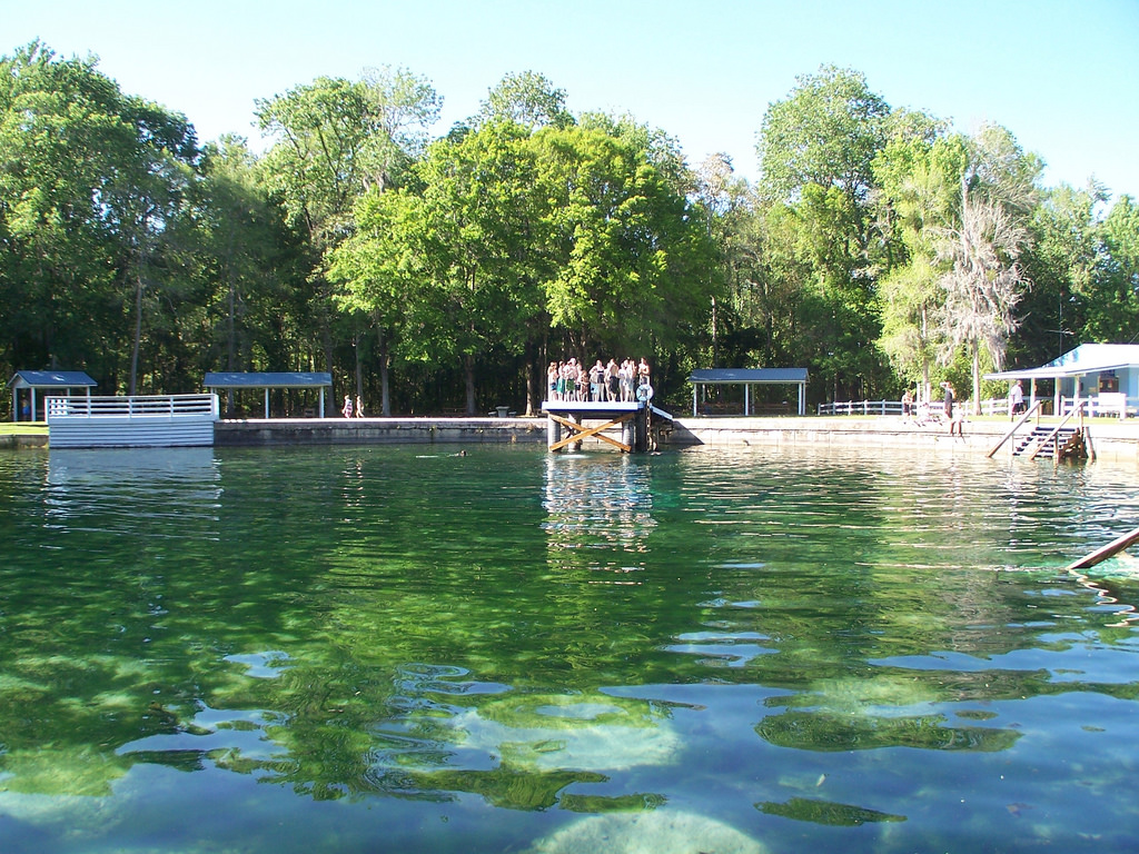 Levy Blue Spring (Levy County, FL) by systemslibrarian, on Flickr