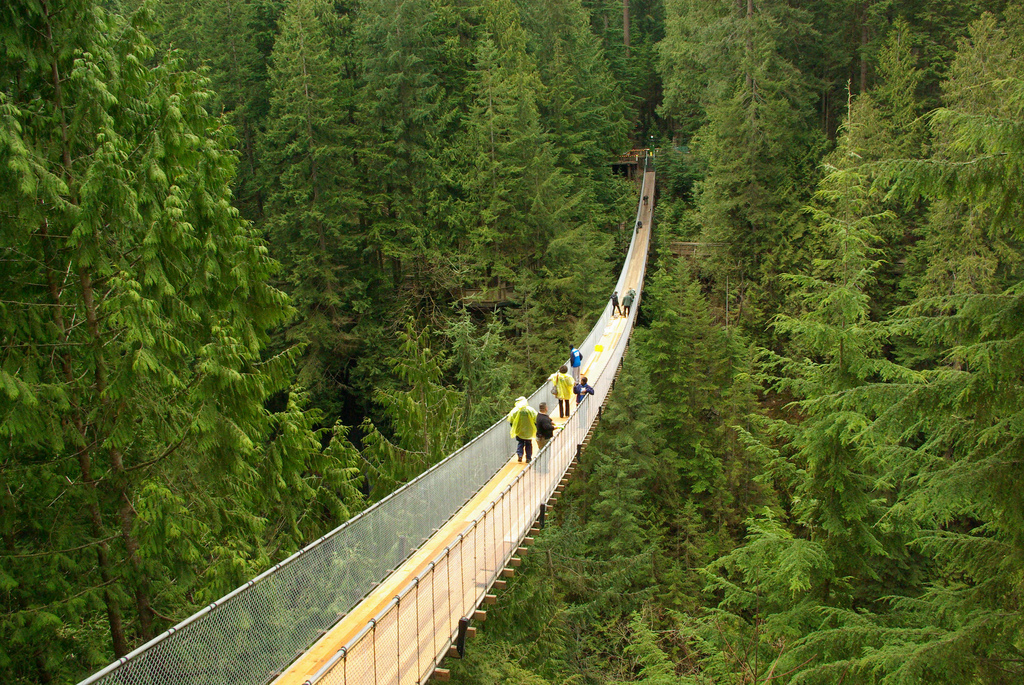 Capilano Suspension Fun by footloosiety, on Flickr