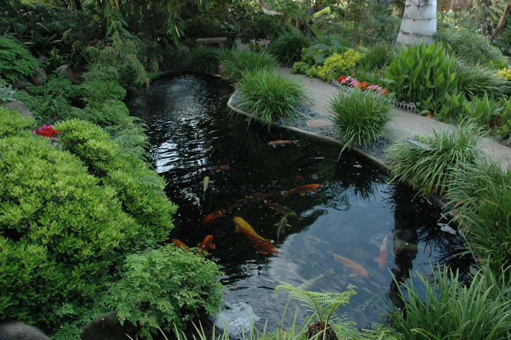 Koi pond and path, Meditation Garden - S by Wonderlane, on Flickr
