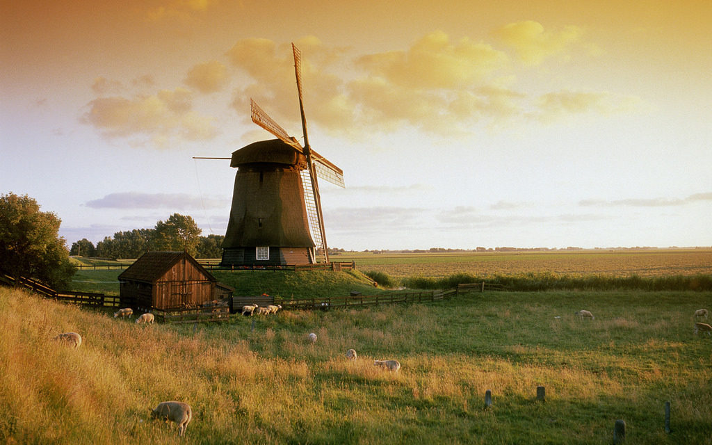 Molen bij Alkmaar (Windmill near Alkmaar by miquitos, on Flickr