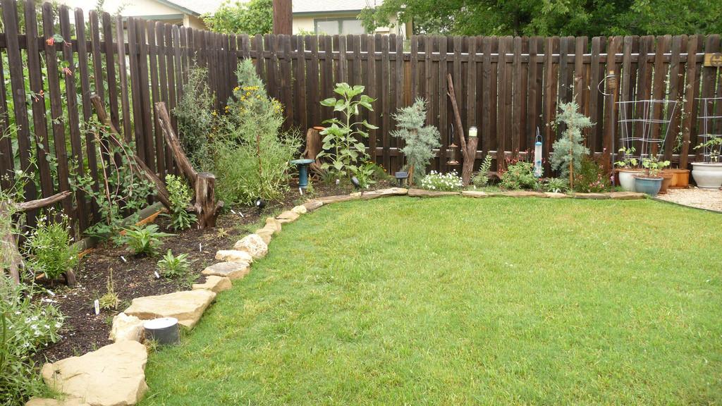 Native Texas Xeriscape Garden Blooming by KoryeLogan, on Flickr