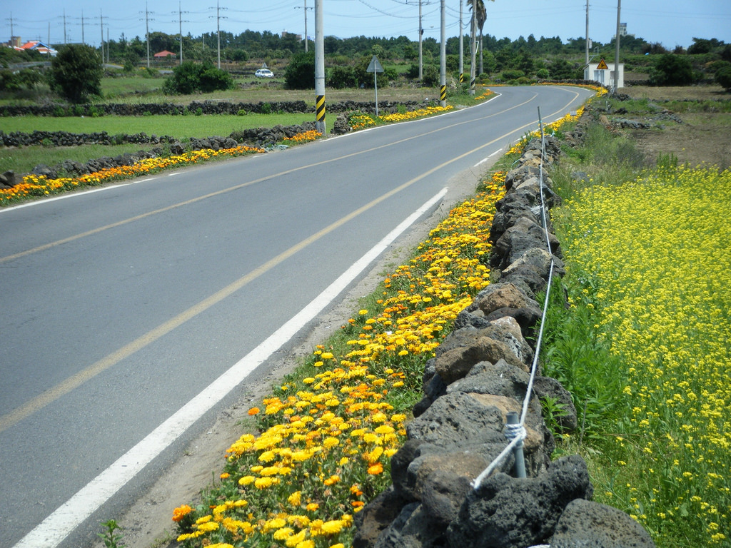 Jeju country road by garycycles3, on Flickr