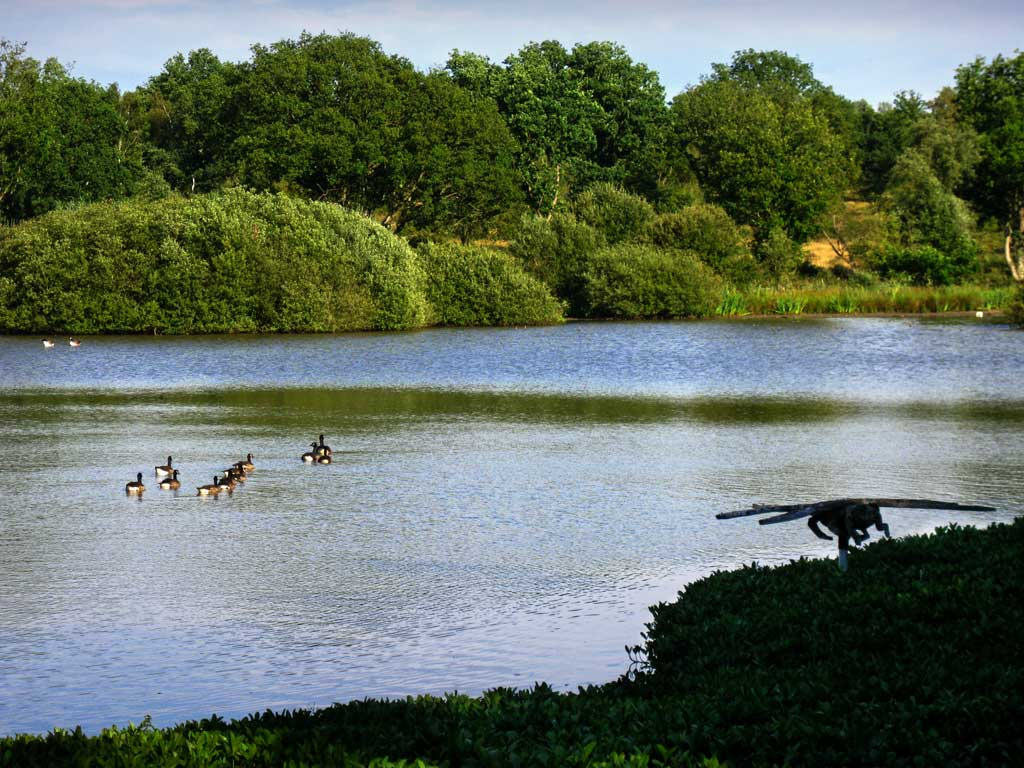 Great Stew Pond, Epsom Common, Surrey by mira66, on Flickr