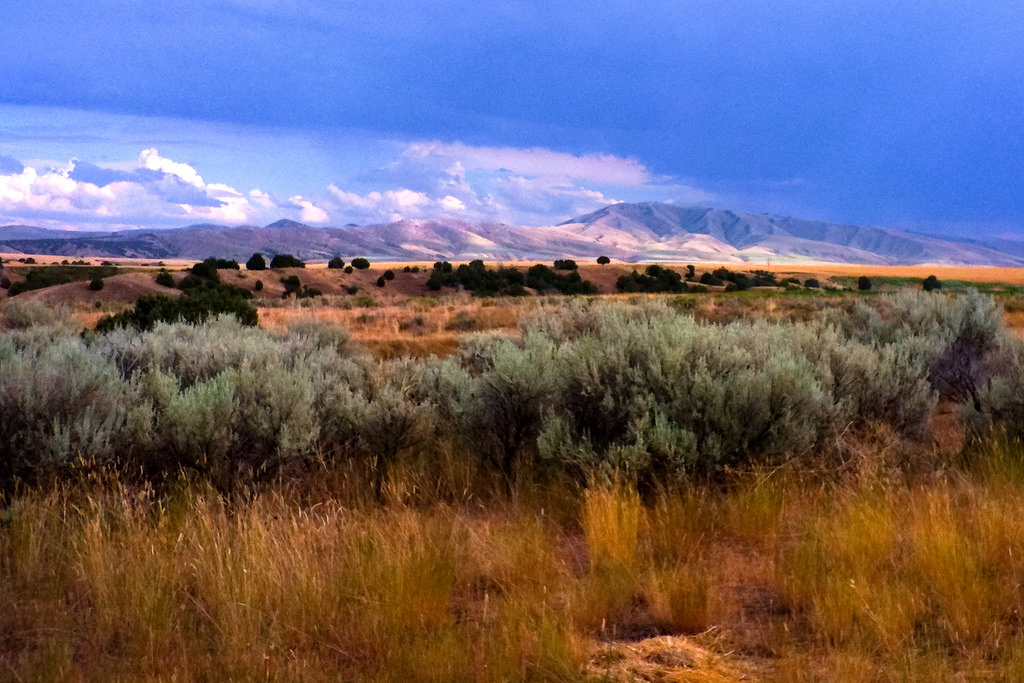 Painting Idaho by *~Dawn~*, on Flickr