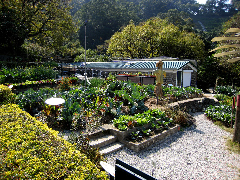 Organic vegetable garden, Kadoorie Farm, by chailey, on Flickr