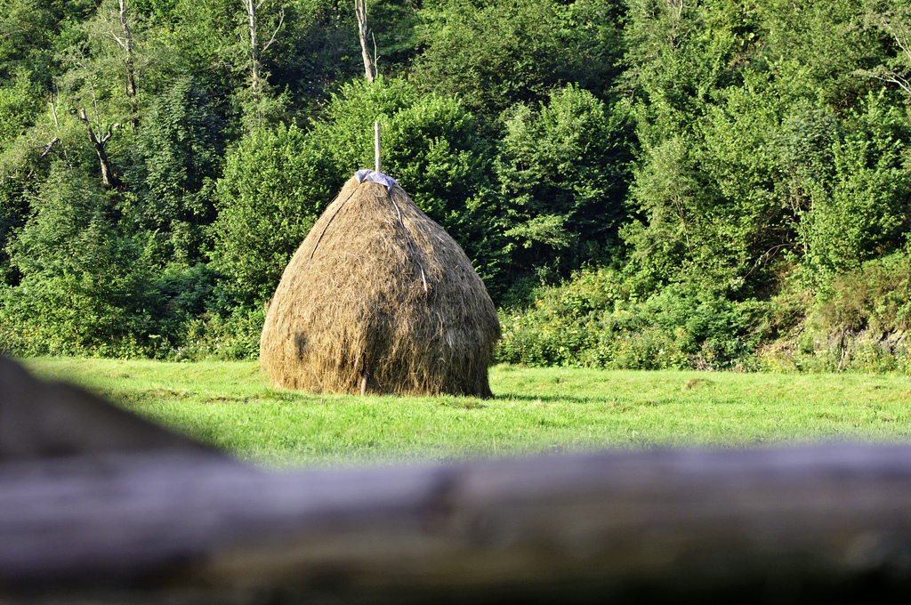 Brown haystack in an empty field by Horia Varlan, on Flickr