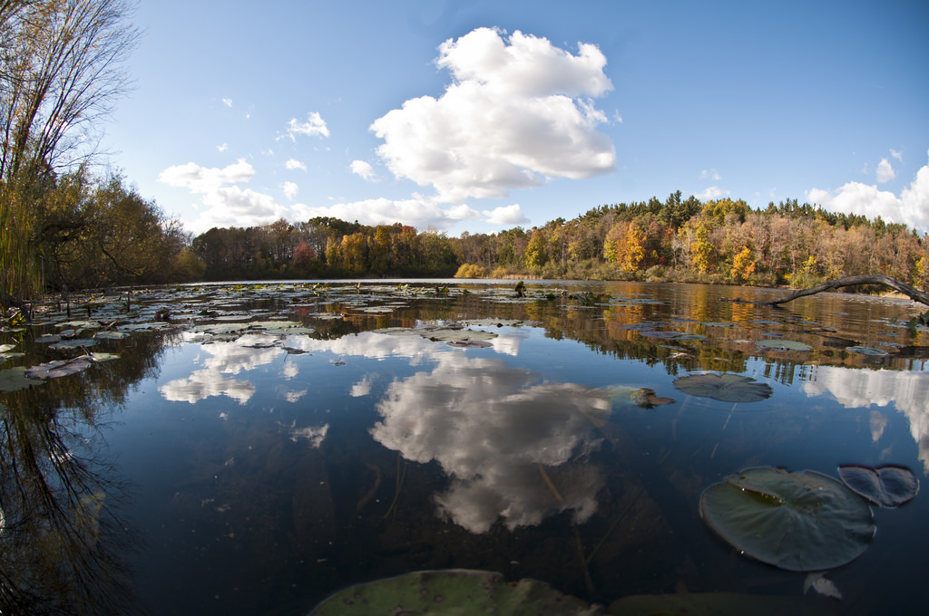 Third Sister Lake at Saginaw Forest by umseas, on Flickr
