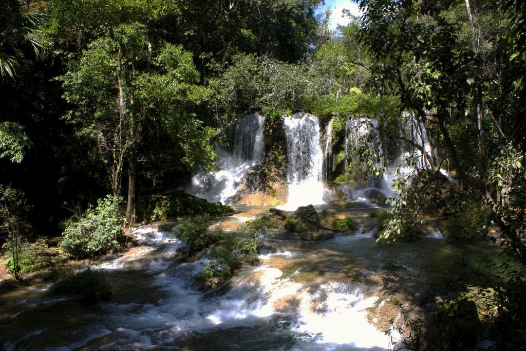 Chiapas, Selva Lacandona < cascadas de M by MandoBarista, on Flickr
