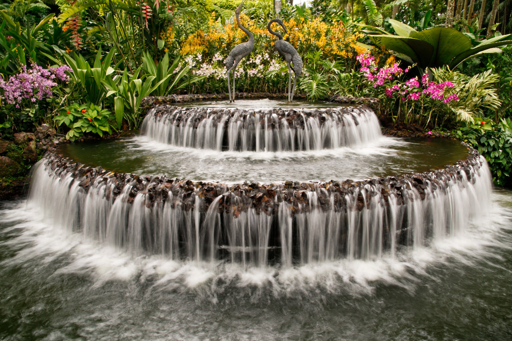 Flower & Waterfall by narin-flickr, on Flickr