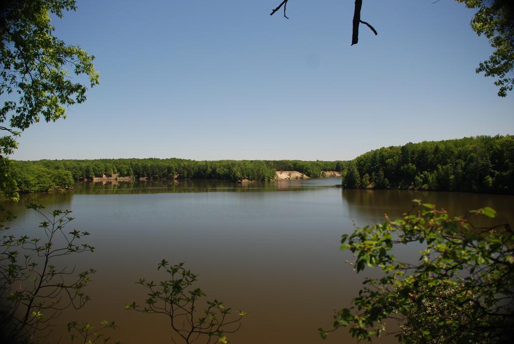 Tippy Dam Pond by Tony Faiola, on Flickr