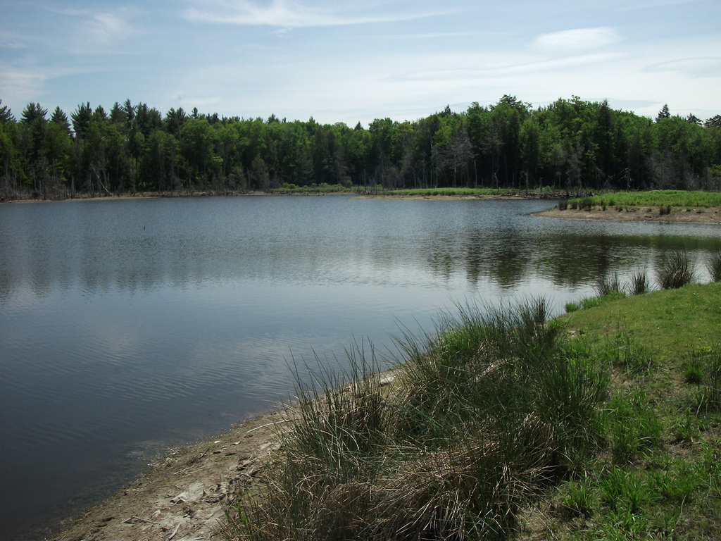 Looking Glass Pond - West Fulton, New Yo by Dougtone, on Flickr