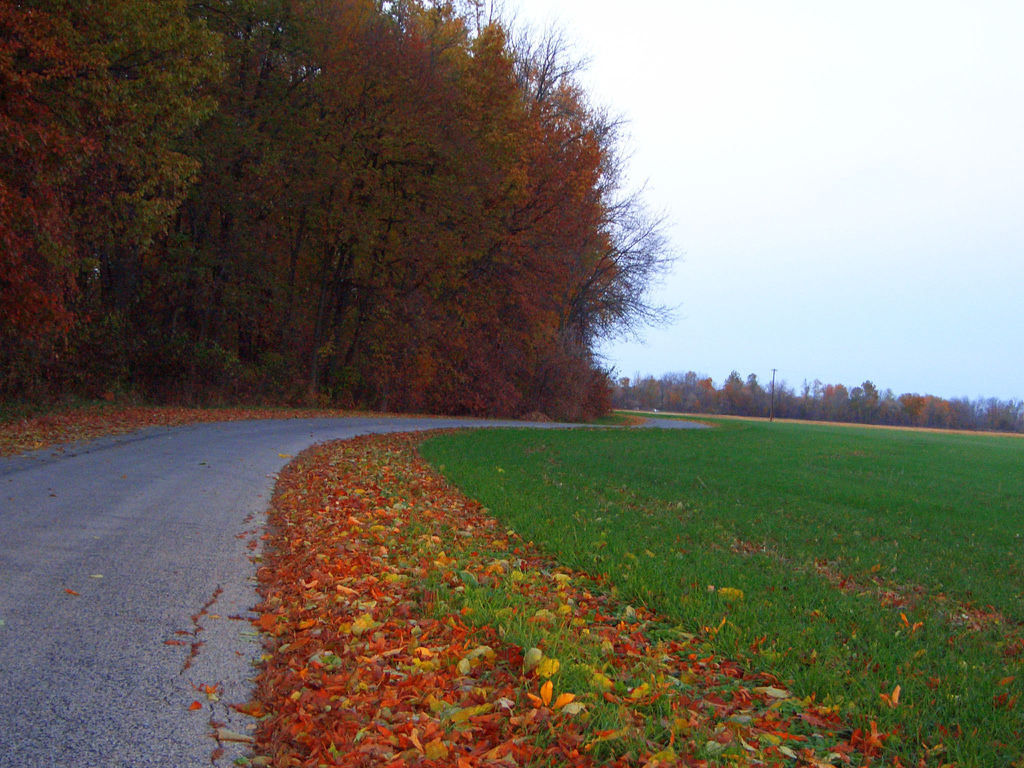 Country Road by Global Reactions, on Flickr
