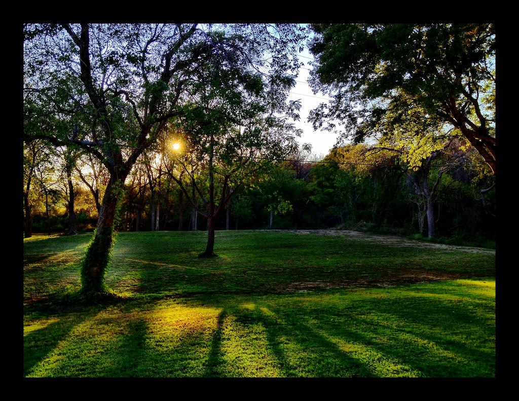 Backyard sunsets by colincalvert, on Flickr