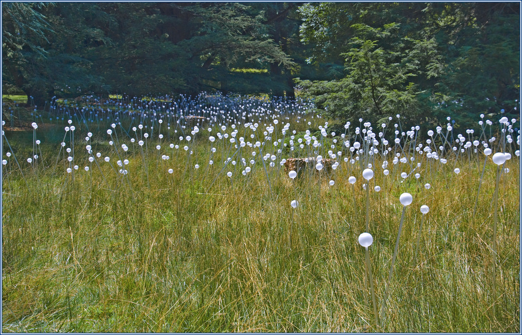 'Field of Light' by Bruce Munro -- Longw by Ron Cogswell, on Flickr