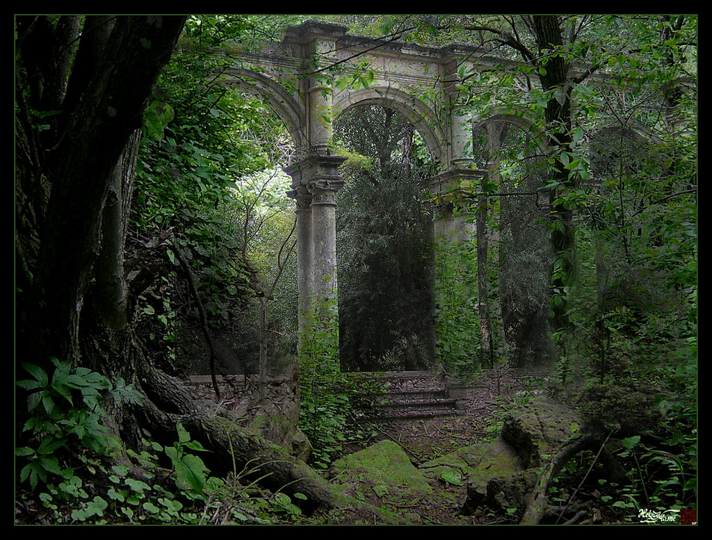 Forest_Ruins_by_HeliusFlame by Dams999, on Flickr